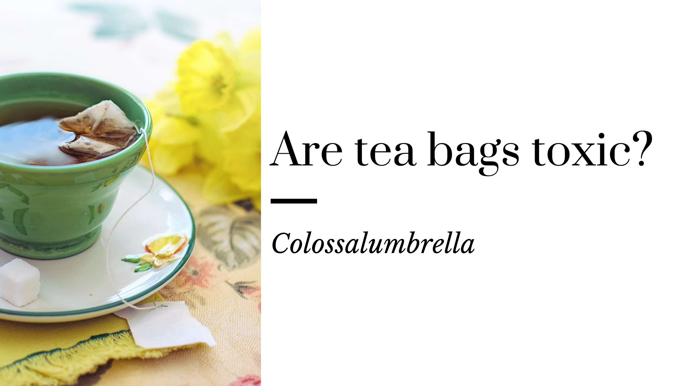 Are You Aware Of Tea Bags Plastic? Do You Know What Are Tea Bags Made Of?